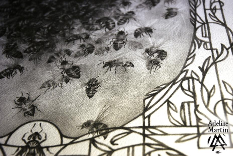 Adeline_Martin_Alvearia_Bees_Abeilles (2)